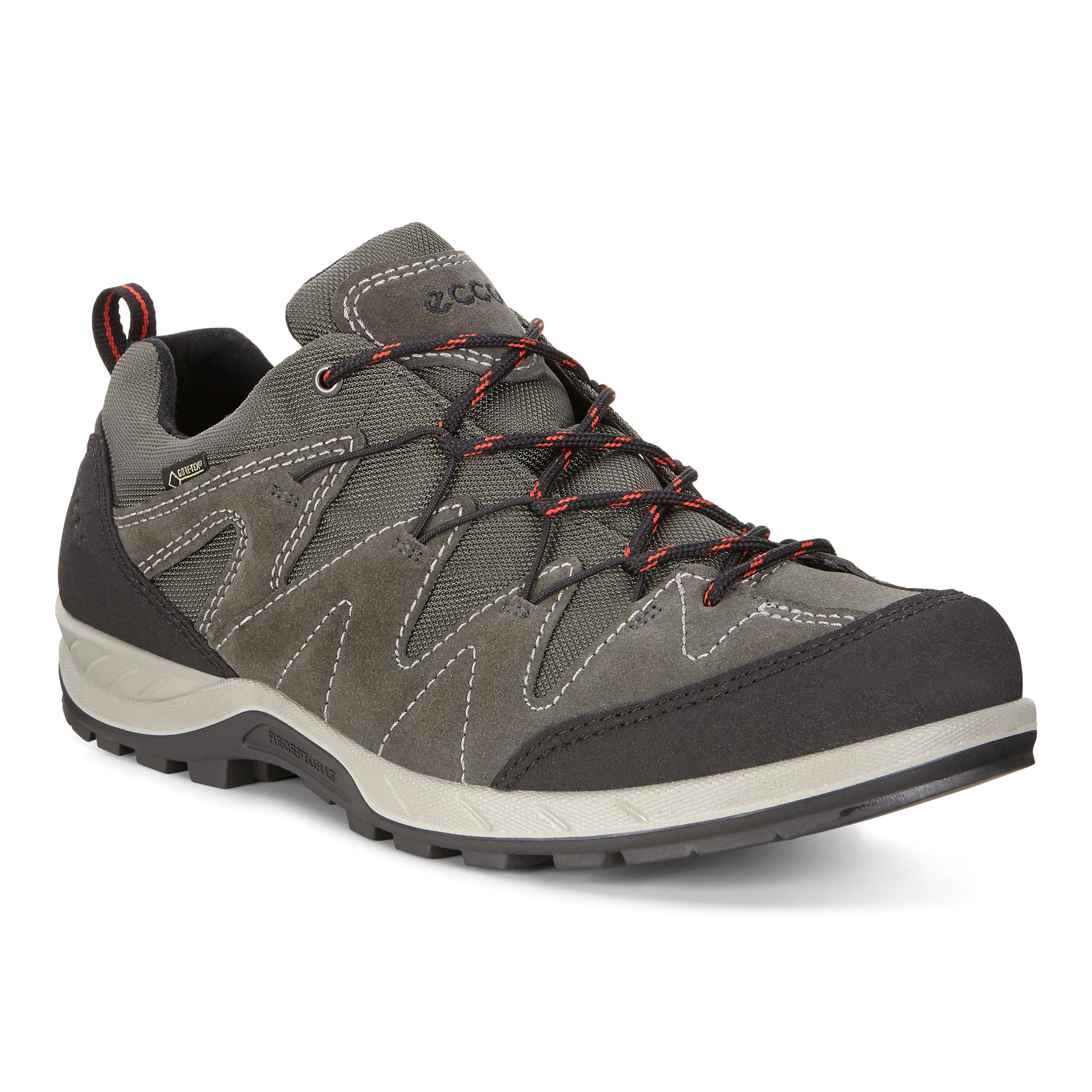 shoes man Ecco 69163